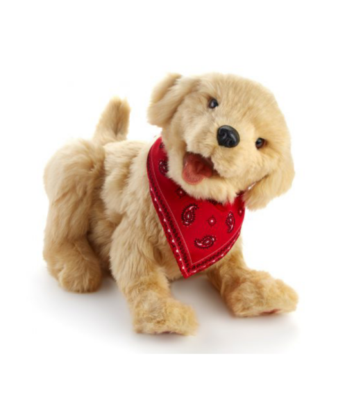 teraphund orange robot hund Mentex
